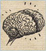 Brain on Board icon